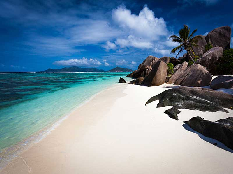 Go to the Seychelles